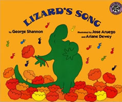 Lizard's Song book cover