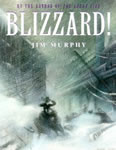 Blizzard book cover